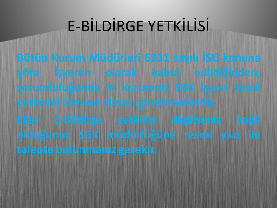 E-BİLDİRGE YETKİLİSİ