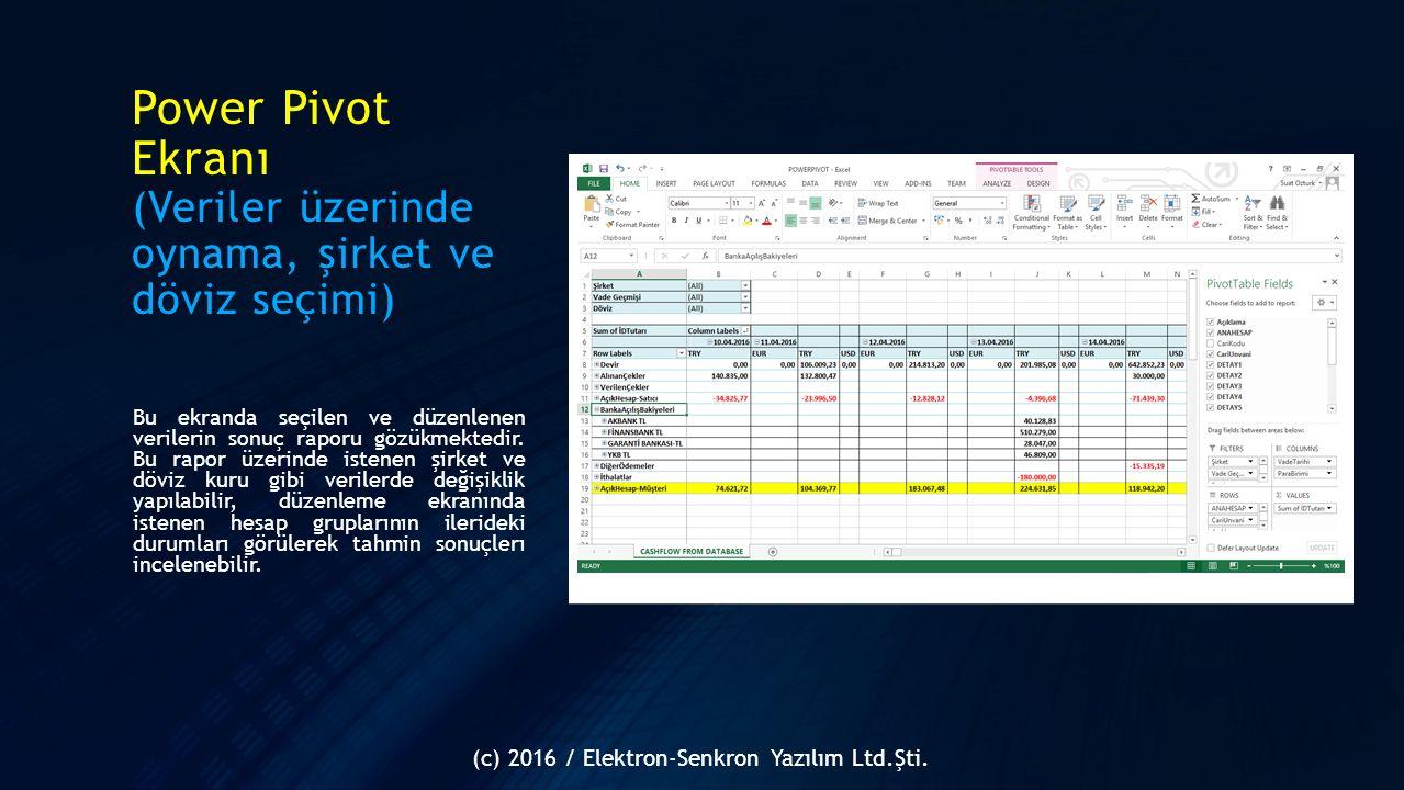 Power Pivot Ekranı (Veriler üzerinde oynama, şirket ve döviz seçimi)