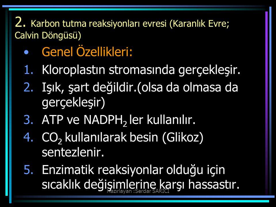 2. Karbon tutma reaksiyonları evresi (Karanlık Evre; Calvin Döngüsü)