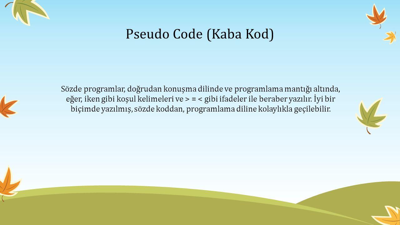 Pseudo Code (Kaba Kod)