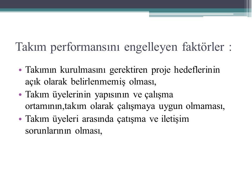 Takım performansını engelleyen faktörler :