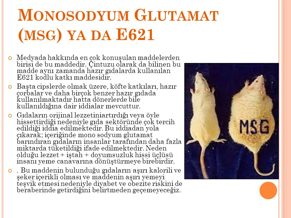 Monosodyum Glutamat (msg) ya da E621