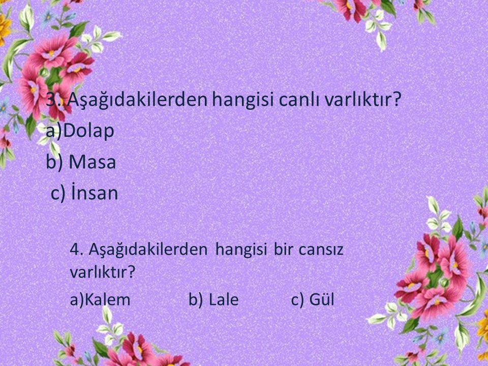 3. Aşağıdakilerden hangisi canlı varlıktır a)Dolap b) Masa c) İnsan
