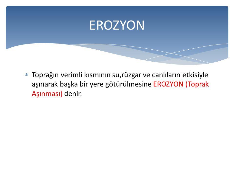 EROZYON Toprağın verimli kısmının su,rüzgar ve canlıların etkisiyle aşınarak başka bir yere götürülmesine EROZYON (Toprak Aşınması) denir.