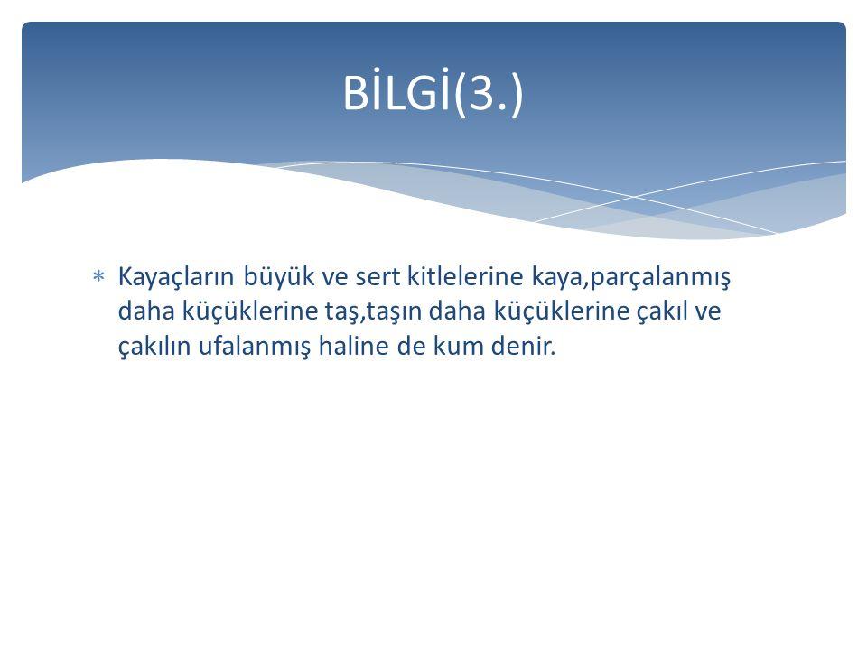 BİLGİ(3.)