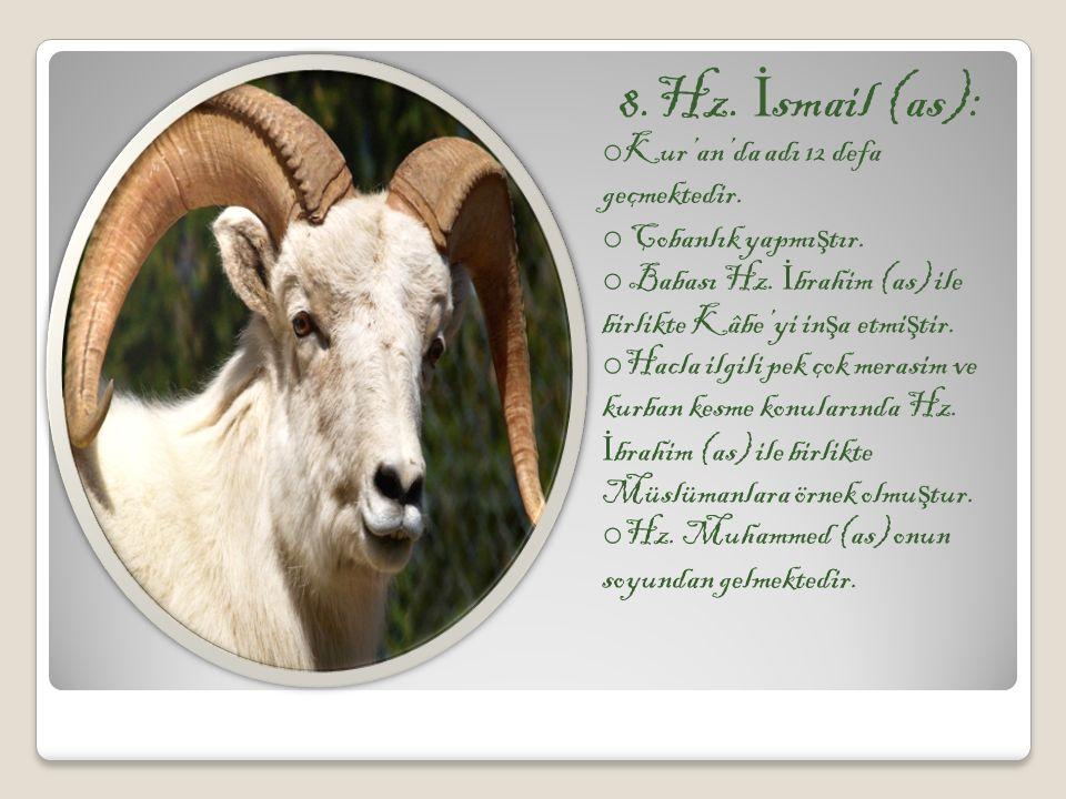 8.Hz. İsmail (as): Kur'an'da adı 12 defa geçmektedir.