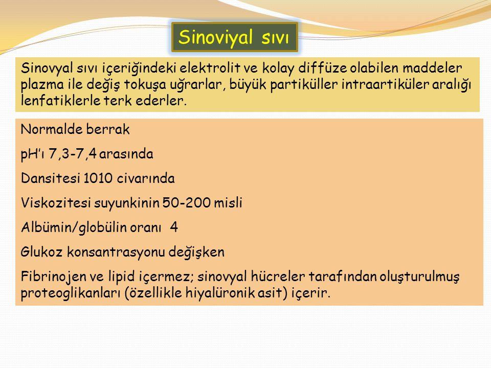 Sinoviyal sıvı