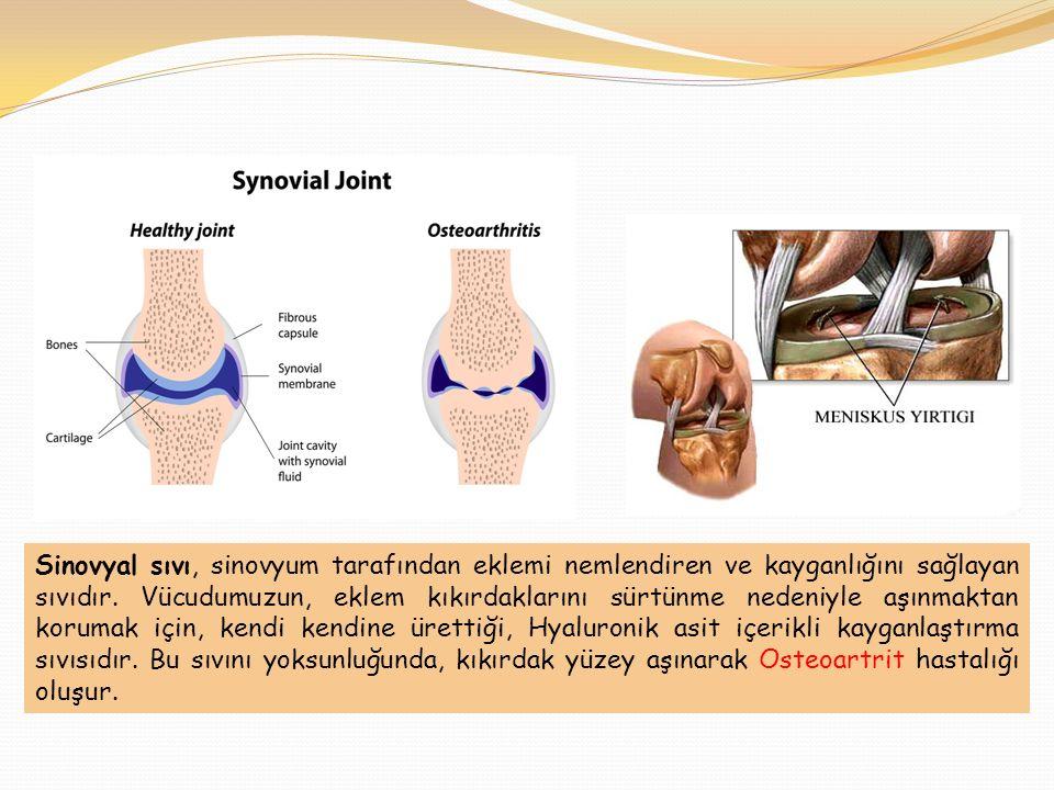 Sinovyal sıvı, sinovyum tarafından eklemi nemlendiren ve kayganlığını sağlayan sıvıdır.