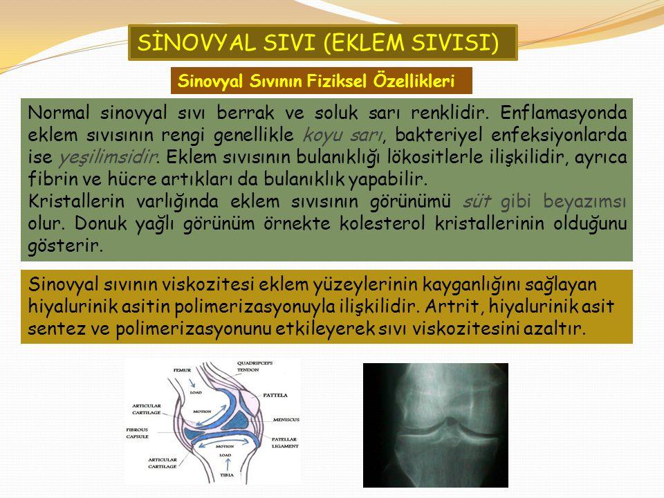 SİNOVYAL SIVI (EKLEM SIVISI)