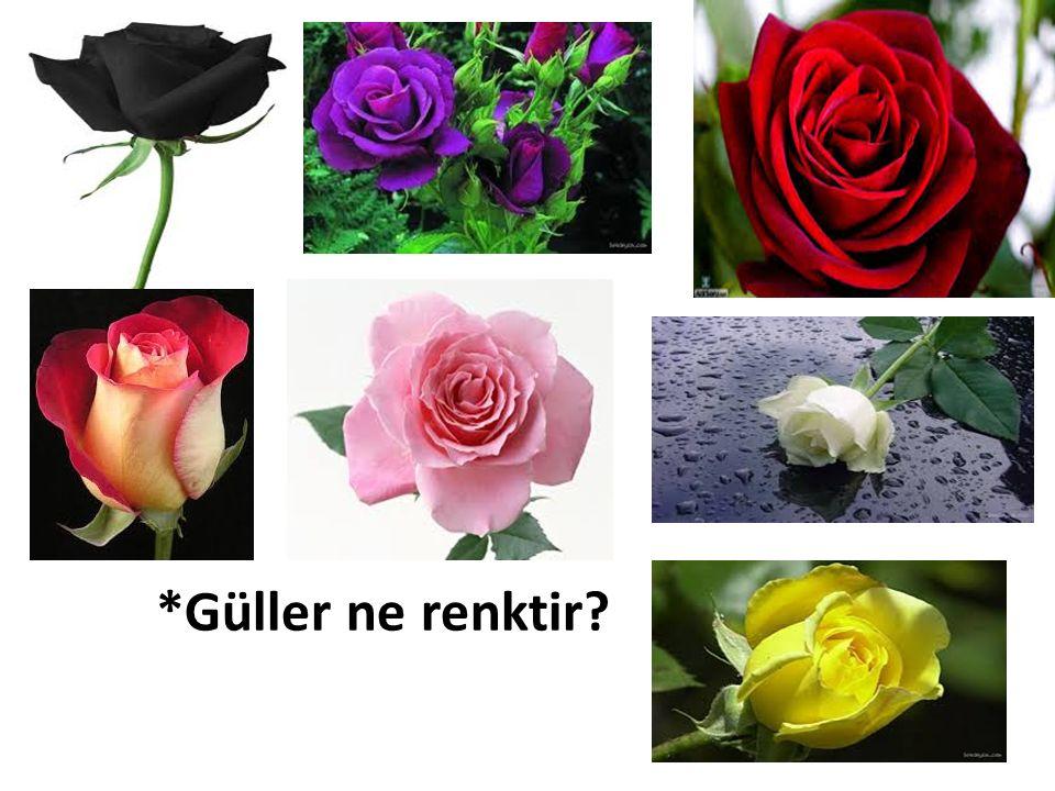 *Güller ne renktir