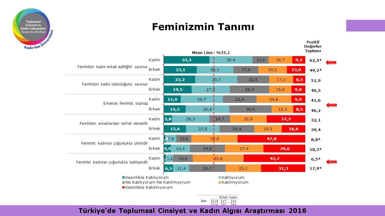 Feminizmin Tanımı Pozitif Değerler Toplamı. Mean Line : %35,1. 62,5* 49,2* 51,9. 46,5. 41,6. 46,2.