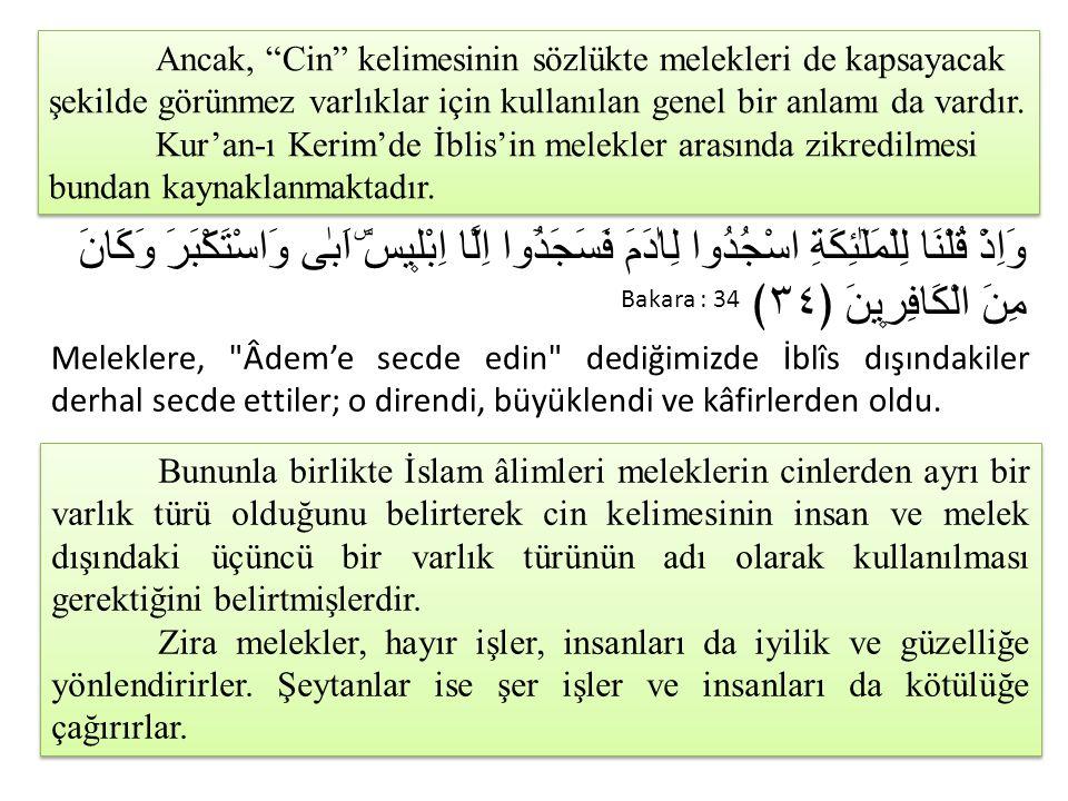 Ancak, Cin kelimesinin sözlükte melekleri de kapsayacak şekilde görünmez varlıklar için kullanılan genel bir anlamı da vardır. Kur'an-ı Kerim'de İblis'in melekler arasında zikredilmesi bundan kaynaklanmaktadır.