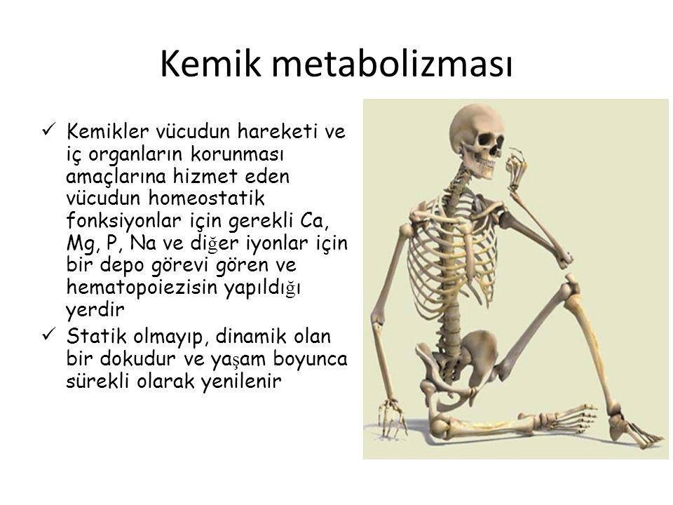 Kemik metabolizması