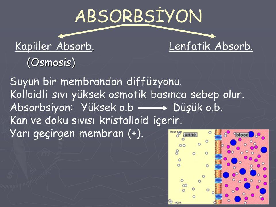 ABSORBSİYON Kapiller Absorb. Lenfatik Absorb. (Osmosis)