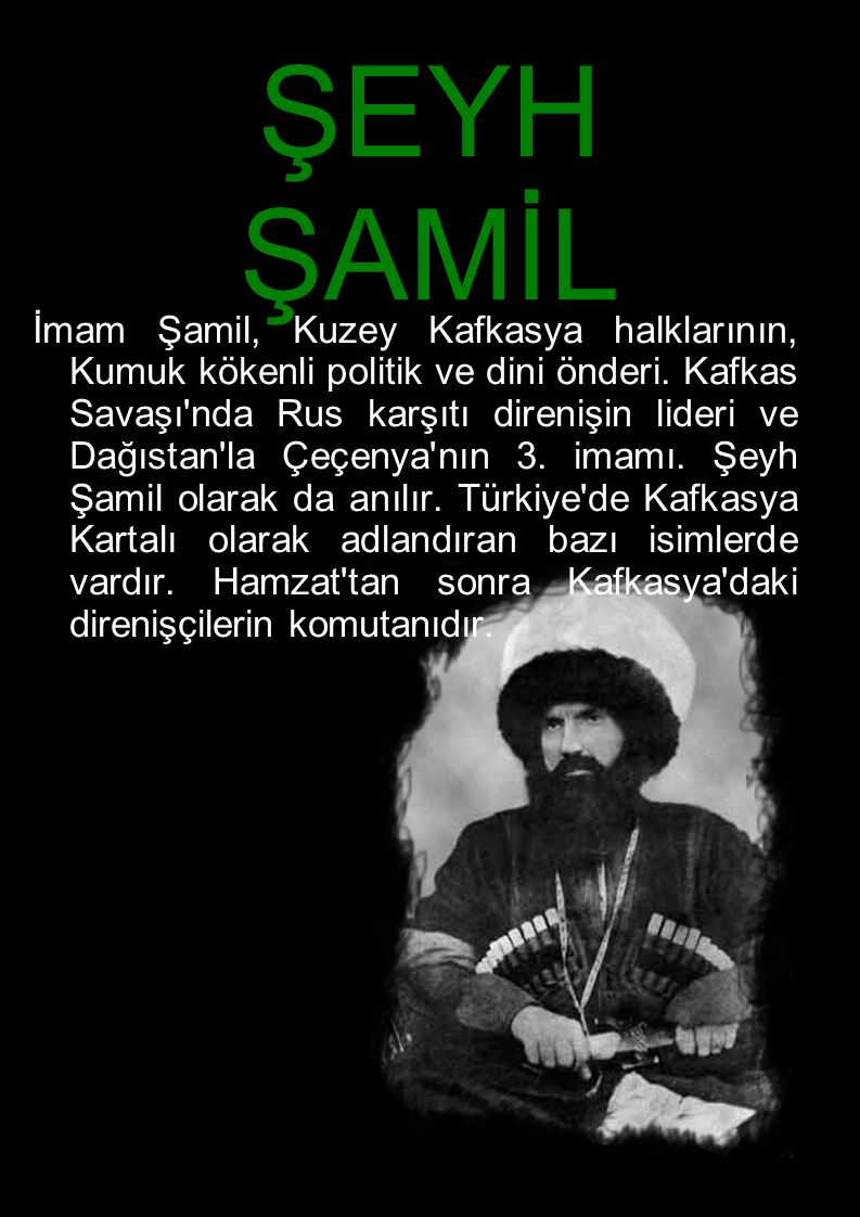 ŞEYH ŞAMİL