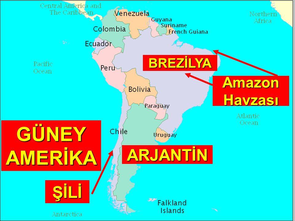 BREZİLYA Amazon Havzası GÜNEY AMERİKA ARJANTİN ŞİLİ