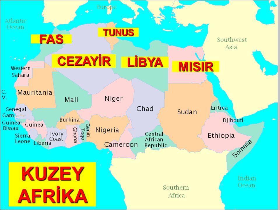 TUNUS FAS CEZAYİR LİBYA MISIR KUZEY AFRİKA