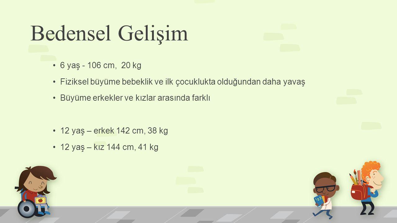 Bedensel Gelişim 6 yaş - 106 cm, 20 kg