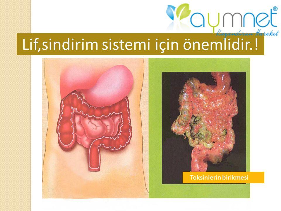 Lif,sindirim sistemi için önemlidir.!