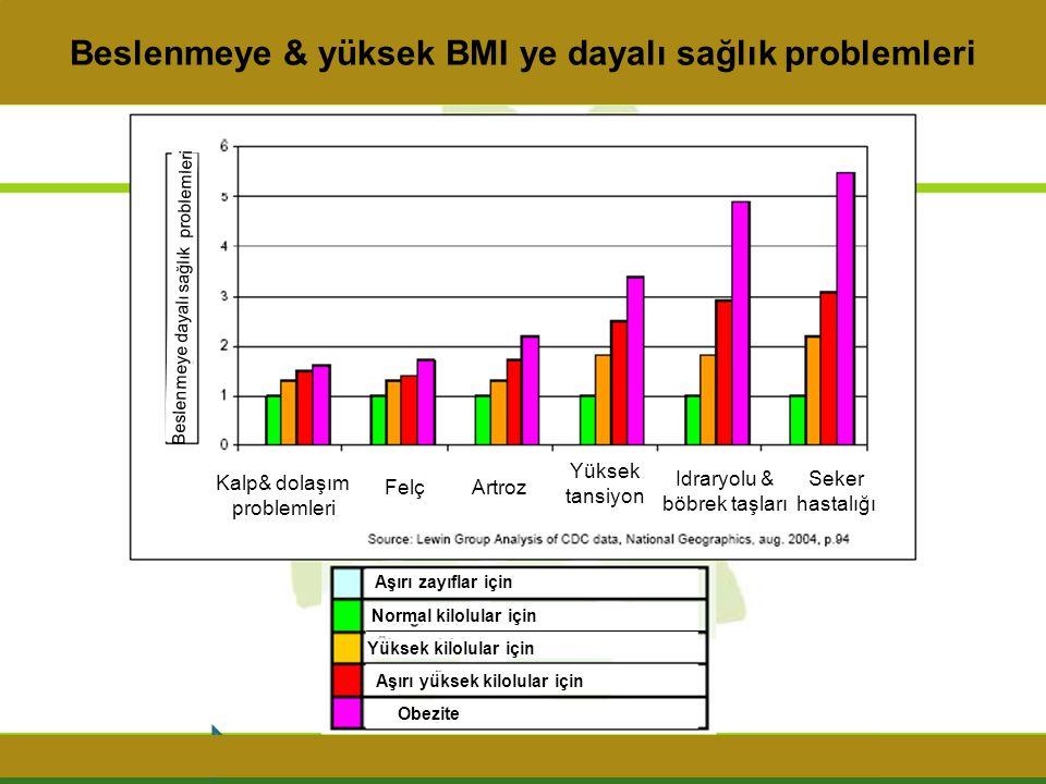 Beslenmeye & yüksek BMI ye dayalı sağlık problemleri
