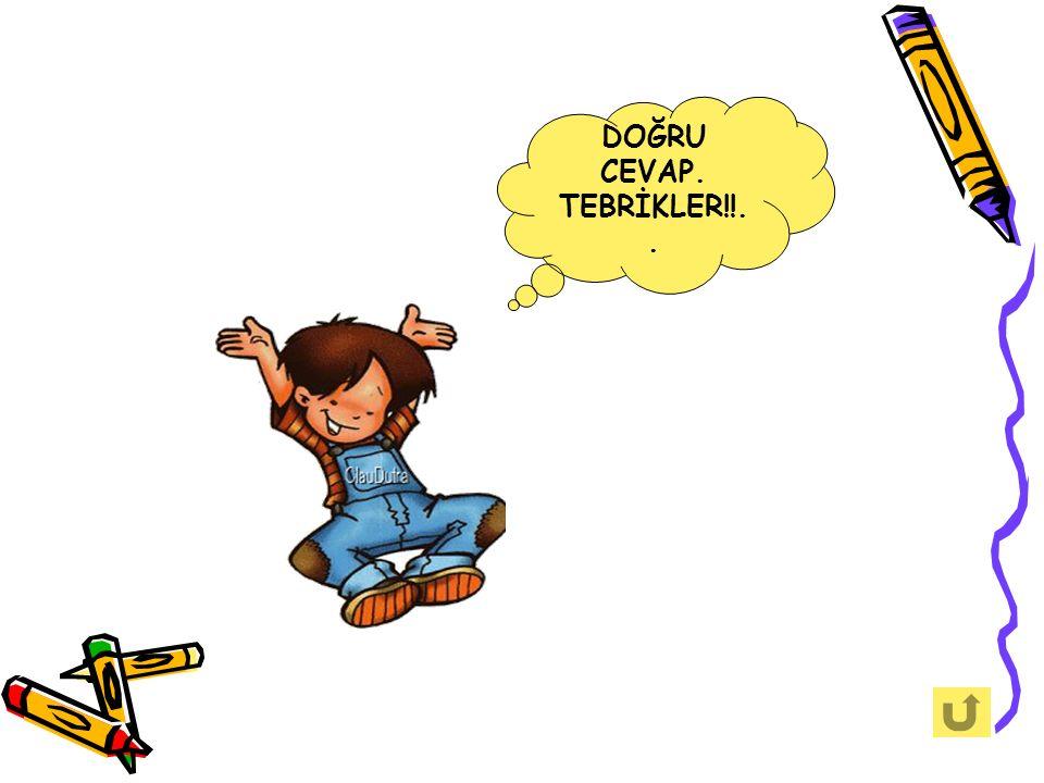 DOĞRU CEVAP. TEBRİKLER!!..