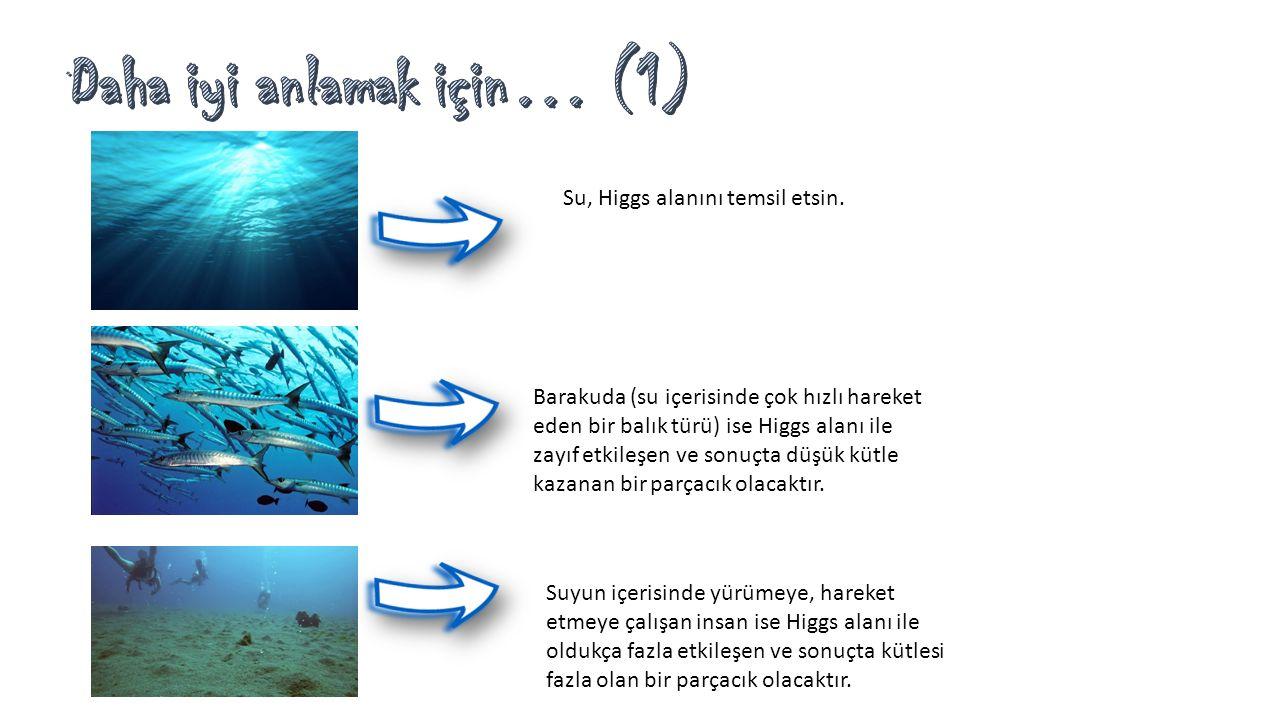 Daha iyi anlamak için… (1)