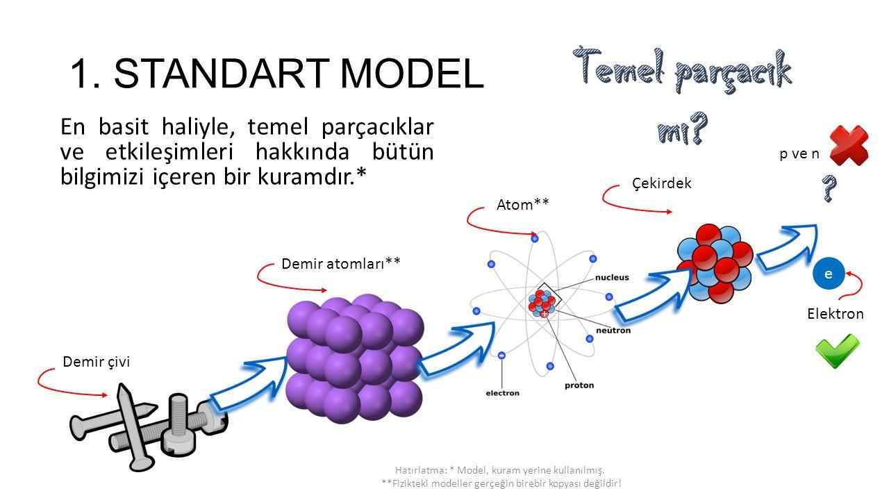 Temel parçacık mı 1. STANDART MODEL