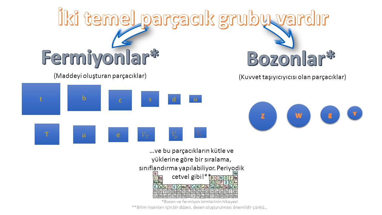 İki temel parçacık grubu vardır