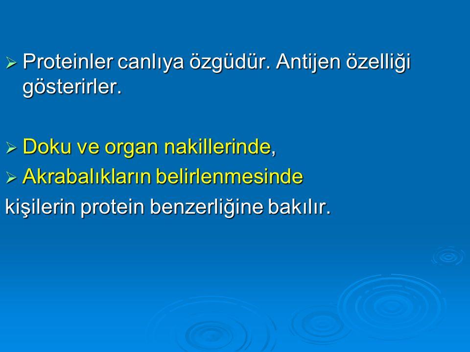 Proteinler canlıya özgüdür. Antijen özelliği gösterirler.