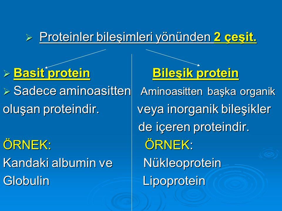 Proteinler bileşimleri yönünden 2 çeşit.