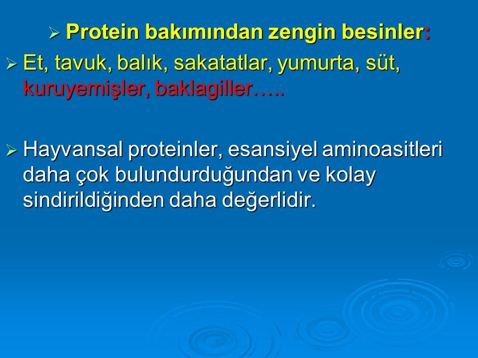 Protein bakımından zengin besinler:
