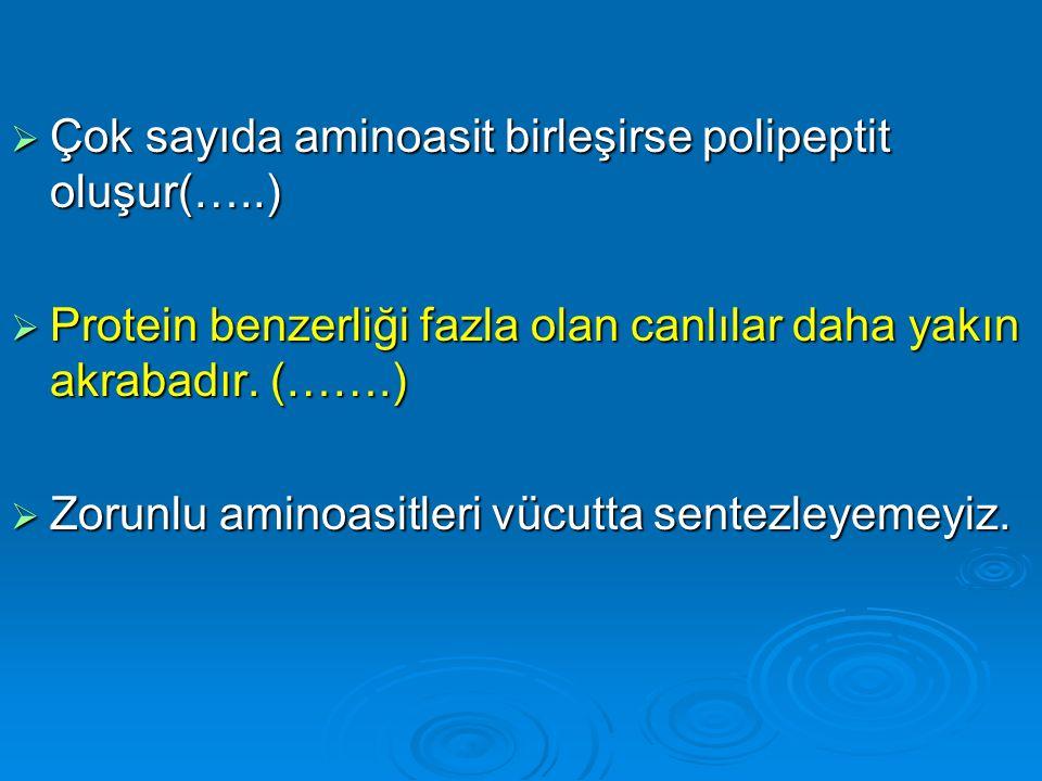 Çok sayıda aminoasit birleşirse polipeptit oluşur(…..)