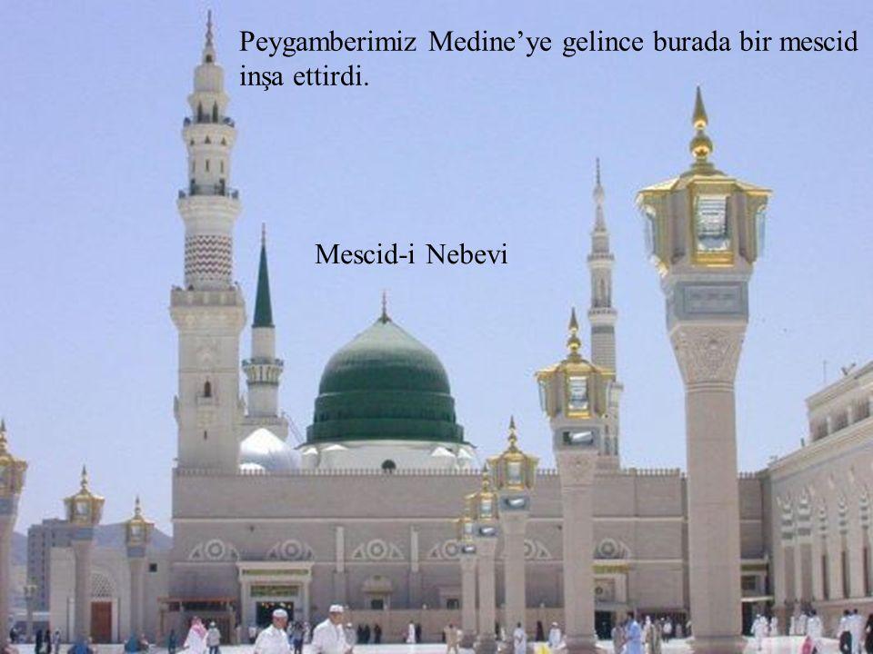 Peygamberimiz Medine'ye gelince burada bir mescid