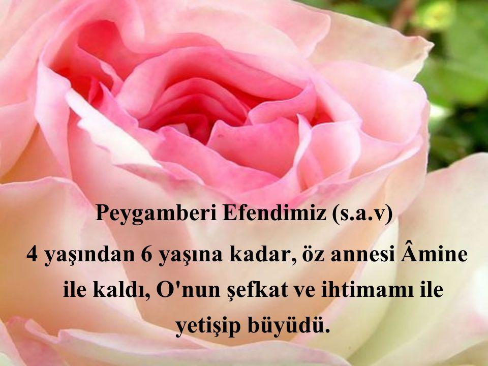 Peygamberi Efendimiz (s.a.v)