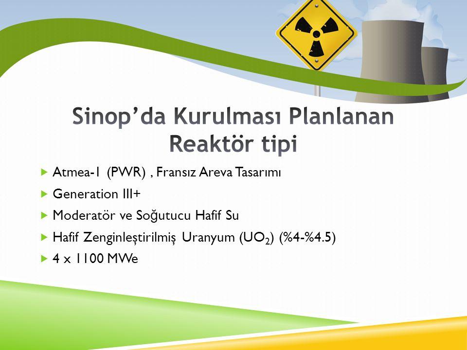 Sinop'da Kurulması Planlanan Reaktör tipi