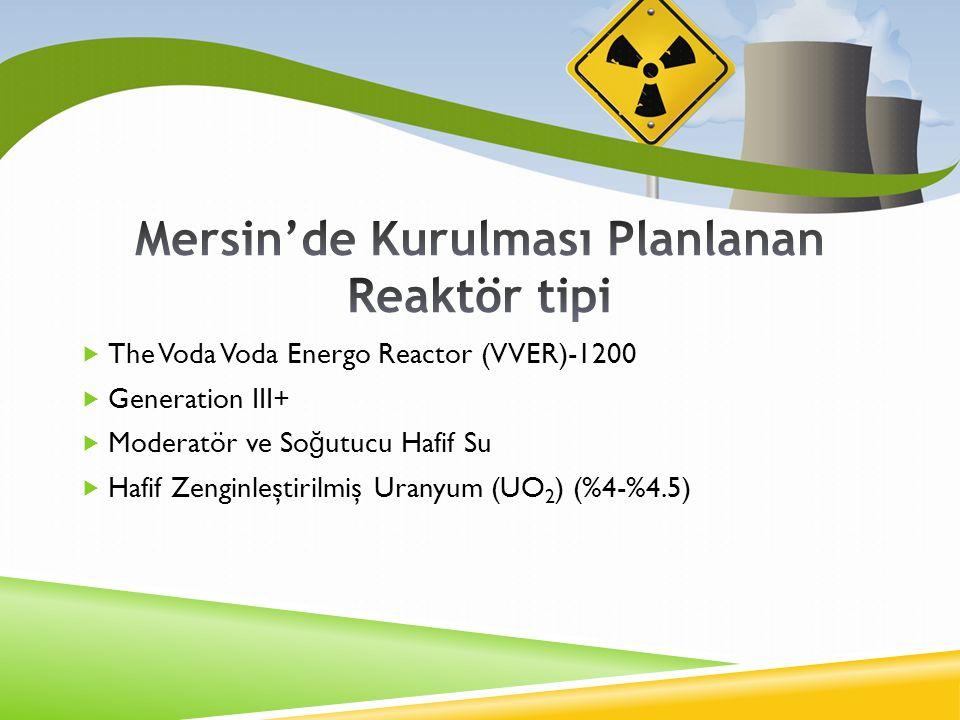 Mersin'de Kurulması Planlanan Reaktör tipi