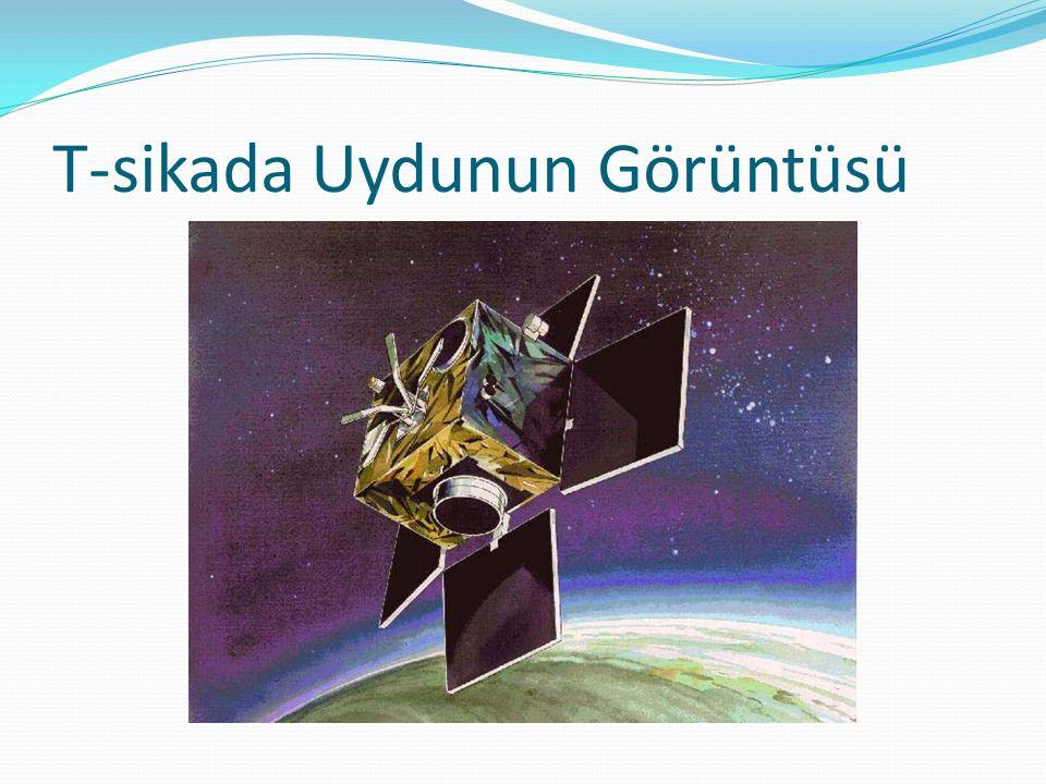 T-sikada Uydunun Görüntüsü