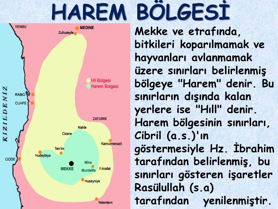 HAREM BÖLGESİ