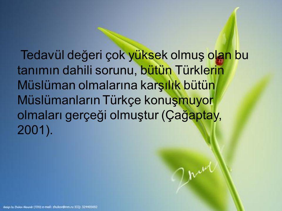Tedavül değeri çok yüksek olmuş olan bu tanımın dahili sorunu, bütün Türklerin Müslüman olmalarına karşılık bütün Müslümanların Türkçe konuşmuyor olmaları gerçeği olmuştur (Çağaptay, 2001).