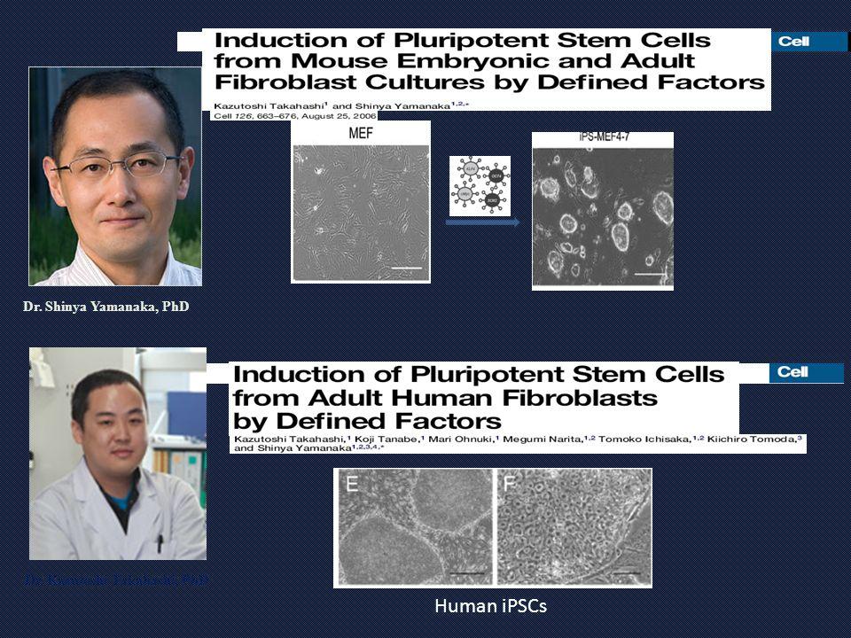 Dr. Kazutoshi Takahashi, PhD