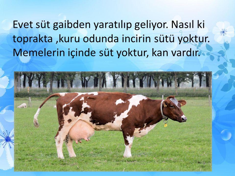 Evet süt gaibden yaratılıp geliyor