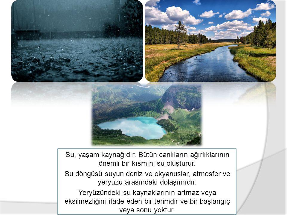 Su, yaşam kaynağıdır. Bütün canlıların ağırlıklarının önemli bir kısmını su oluşturur.