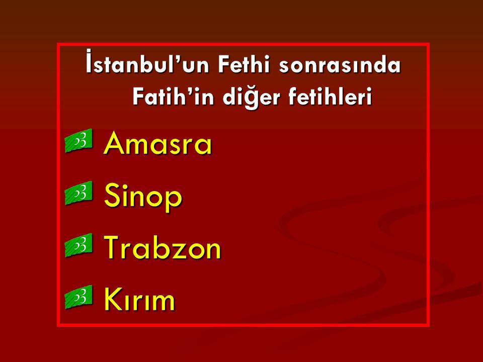 İstanbul'un Fethi sonrasında Fatih'in diğer fetihleri