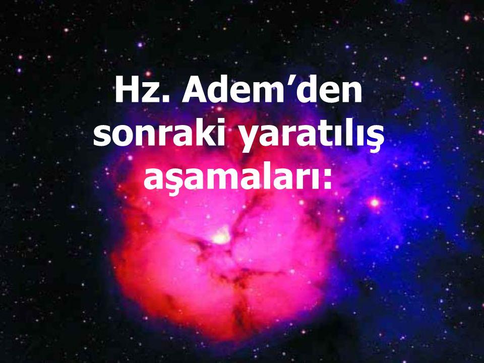 Hz. Adem'den sonraki yaratılış aşamaları: