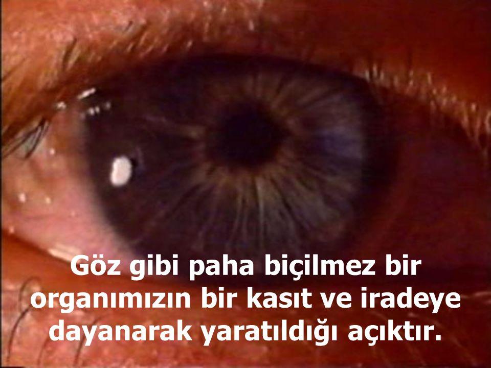 Göz gibi paha biçilmez bir organımızın bir kasıt ve iradeye dayanarak yaratıldığı açıktır.