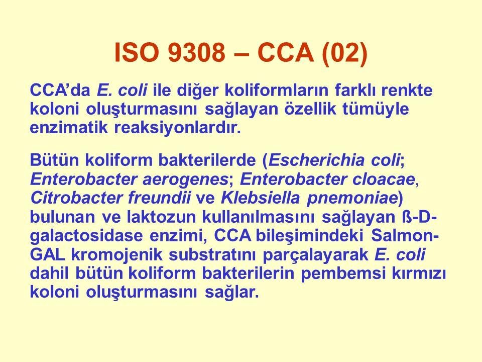 ISO 9308 – CCA (02) CCA'da E. coli ile diğer koliformların farklı renkte koloni oluşturmasını sağlayan özellik tümüyle enzimatik reaksiyonlardır.