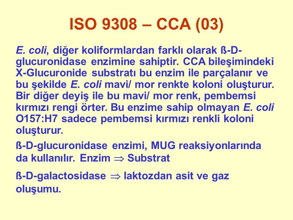 ISO 9308 – CCA (03)
