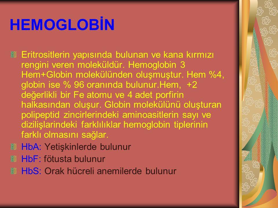 HEMOGLOBİN