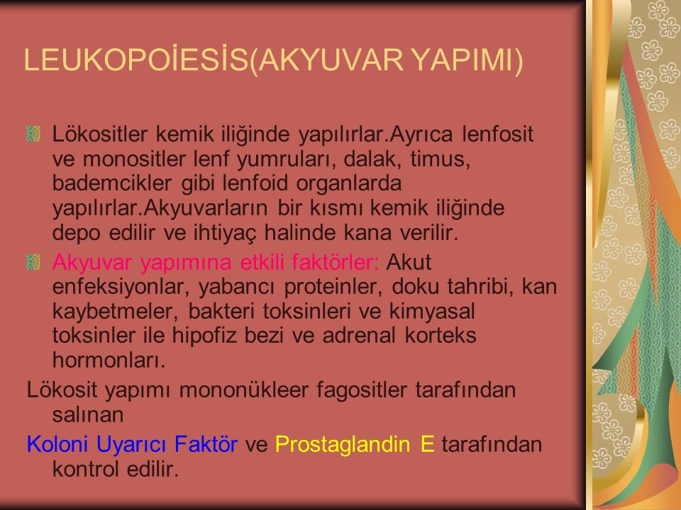 LEUKOPOİESİS(AKYUVAR YAPIMI)