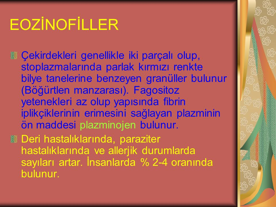 EOZİNOFİLLER